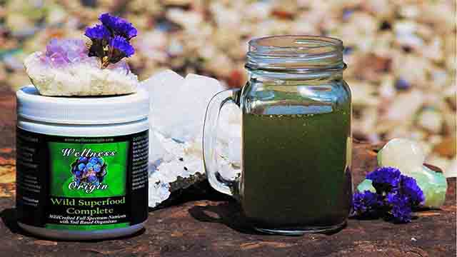 Organic Superfood Blend Wellness Origin