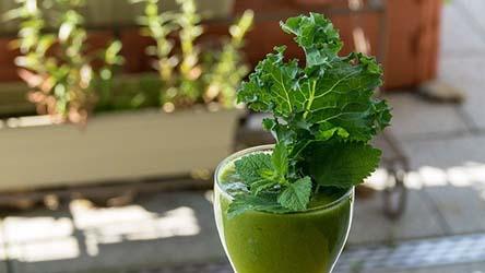 Best Organic Superfood Powder Online