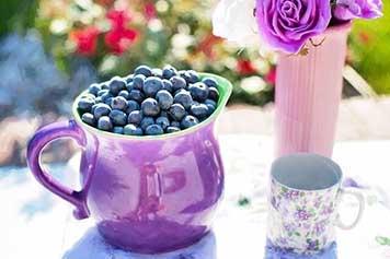 Best foods for health Wellness Origin