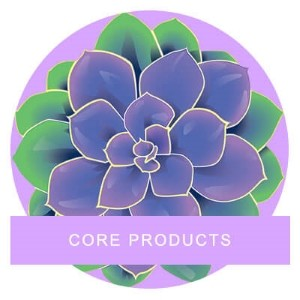 CORE PRODUCTS